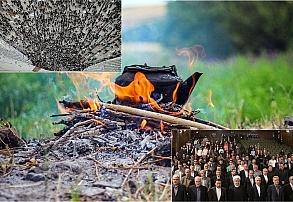 سوخت مردم، سوخت دولت