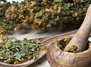 فرصت سوزی در مواجهه با طب سنتی ایرانی